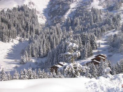 Location au ski Résidence Grand Dou - Méribel-Mottaret - Extérieur hiver