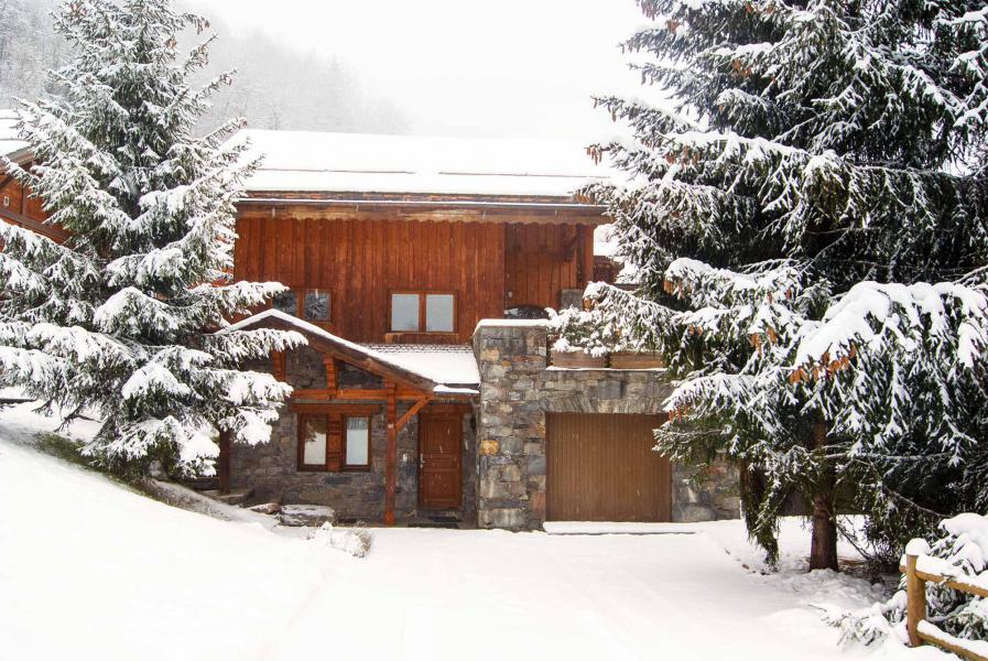 Location au ski Chalet Etienne - Méribel - Extérieur hiver