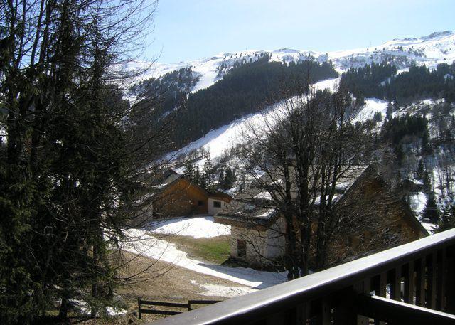 Location au ski Appartement 3 pièces 5 personnes (09) - Résidence l'Edelweiss - Méribel