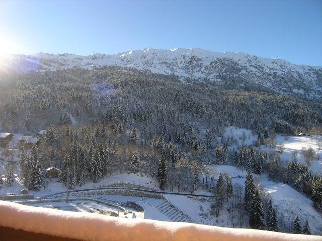 Alquiler al esquí Résidence le Pétaru - Méribel