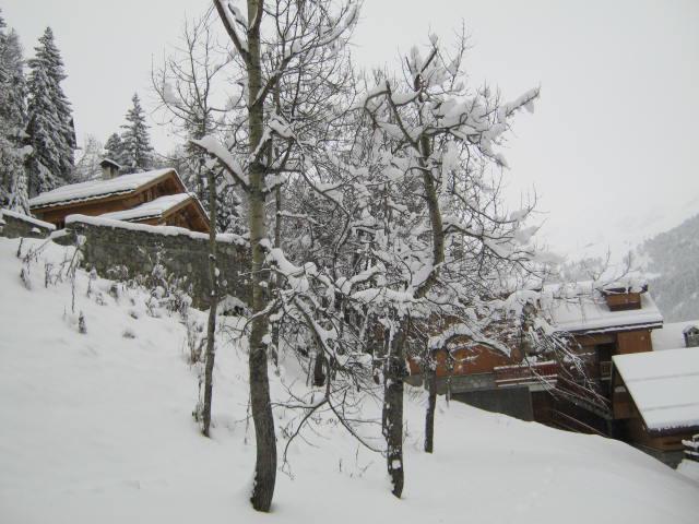 Location au ski Appartement 2 pièces 4 personnes (021) - Residence Le Plan Du Moulin - Méribel