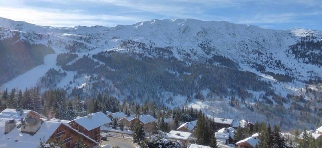 Location au ski Appartement duplex 5 pièces 8 personnes (29) - Residence Chandonnelles Ii - Méribel