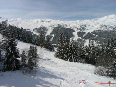 Location au ski Résidence la Gelinotte - Méribel