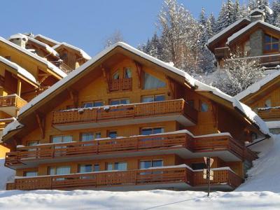 Vacances en montagne Résidence Tsanteleina - Méribel - Extérieur hiver
