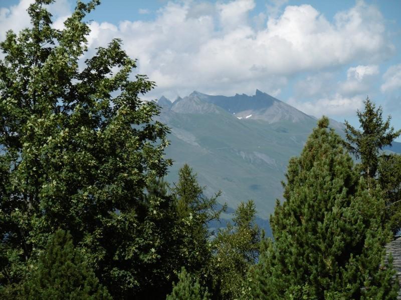 Location au ski Appartement 3 pièces 6 personnes (1059) - Residence Le De 3 - Montchavin - La Plagne
