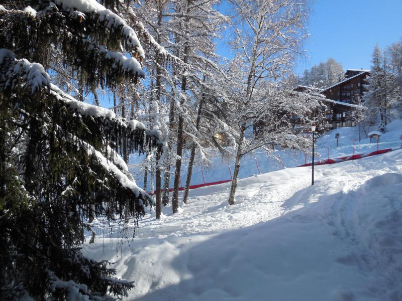 Vacances en montagne Studio 4 personnes (027) - La Résidence les Pentes - Montchavin La Plagne - Extérieur hiver