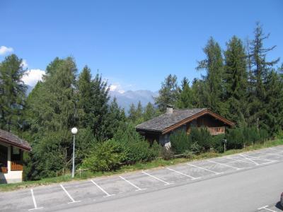 Location au ski Studio coin montagne 4 personnes (202) - Résidence le Dé 3 - Montchavin La Plagne