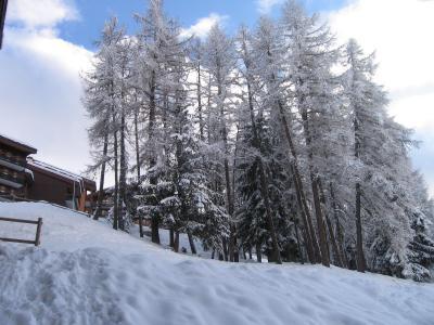 Location au ski Studio 4 personnes (117) - Residence Le De 4 - Montchavin - La Plagne