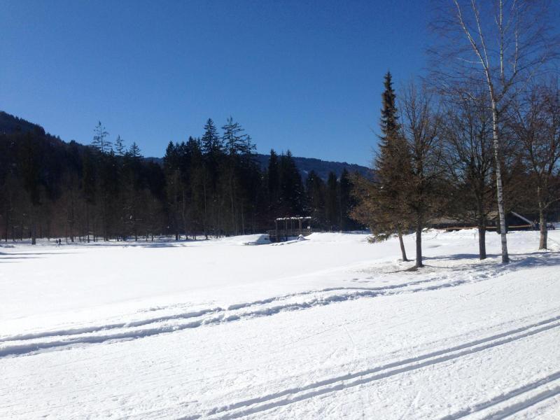Location au ski Appartement 2 pièces 6 personnes (311) - Residence Le Grand Tetras - Morillon - Coin repas