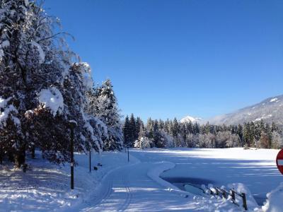 Location au ski Chalet mitoyen 3 pièces 5 personnes - Chalet Les Lys Oranges - Morillon