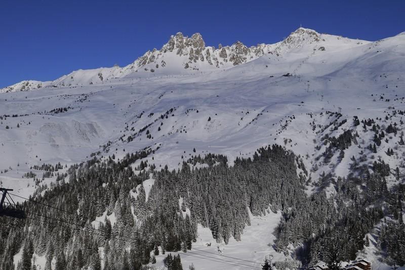 Location au ski Studio 4 personnes (599) - Residence Le Dandy - Méribel-Mottaret