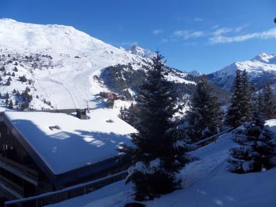 Location au ski Appartement 2 pièces 4 personnes (006) - Residence Erines - Mottaret