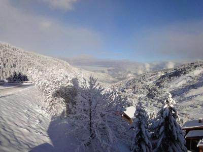 Location au ski Appartement duplex 3 pièces 5 personnes (020) - Residence Les Ancolies - Mottaret - Séjour