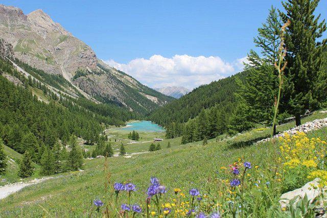 Location au ski Studio coin montagne 4 personnes (46A) - Résidence le Rond Point des Pistes I - Orcières Merlette 1850