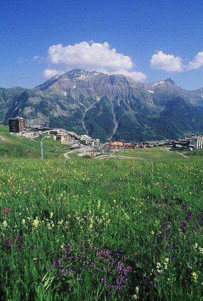 Rent in ski resort 2 room apartment 4 people (134) - Résidence le Chalet d'Orcières - Orcières Merlette 1850