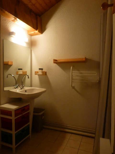 Location au ski Appartement duplex 3 pièces coin montagne 8 personnes (91) - Residence Petite Ourse - Peisey-Vallandry - Salle de bains