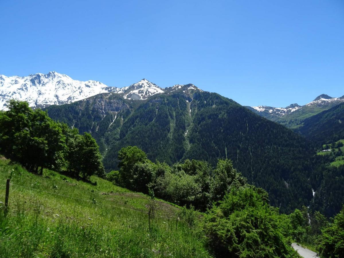 Location au ski Studio coin montagne 4 personnes (26) - Residence Plein Sud - Peisey-Vallandry - Lits superposés