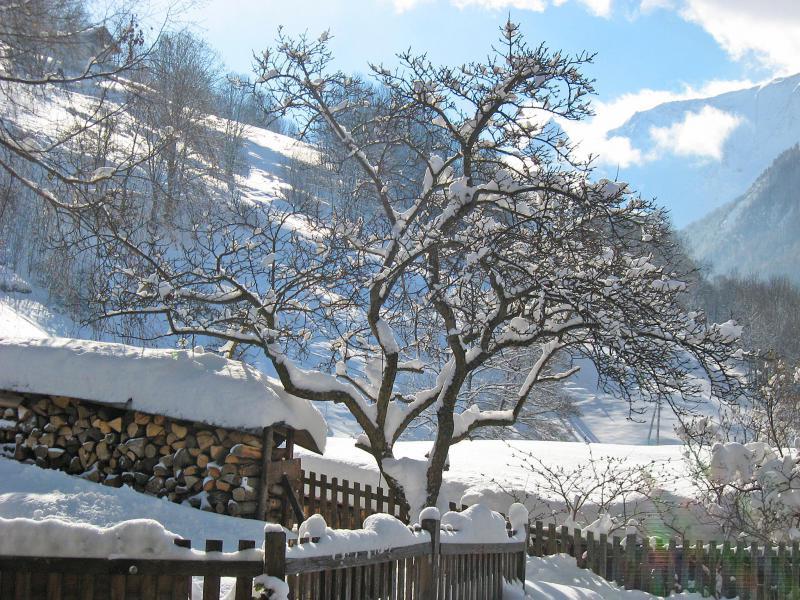 Location au ski Chalet de Claude - Peisey-Vallandry - Extérieur hiver