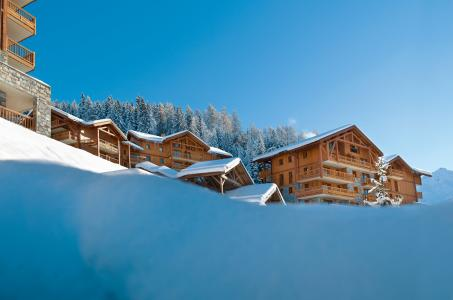 Rental Peisey-Vallandry : L'Orée des Cimes winter