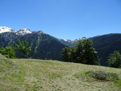 Location au ski Studio 4 personnes (03) - La Résidence le Parc - Peisey-Vallandry