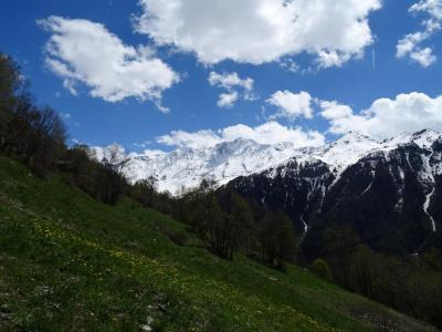 Location au ski Residence Plein Sud - Peisey-Vallandry