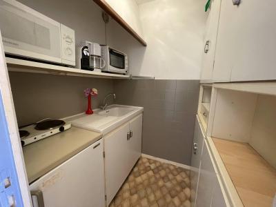 Location au ski Studio 4 personnes (110) - Résidence Dauphinelles 1 - Pelvoux