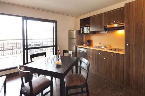 Location au ski Studio 2-4 personnes (Residence) - Le Château des Magnans - Pra Loup - Cuisine