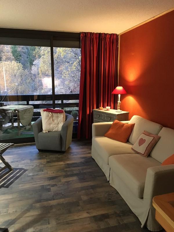 Location au ski Studio coin montagne 4 personnes (202) - Résidence l'Arribau - Pra Loup