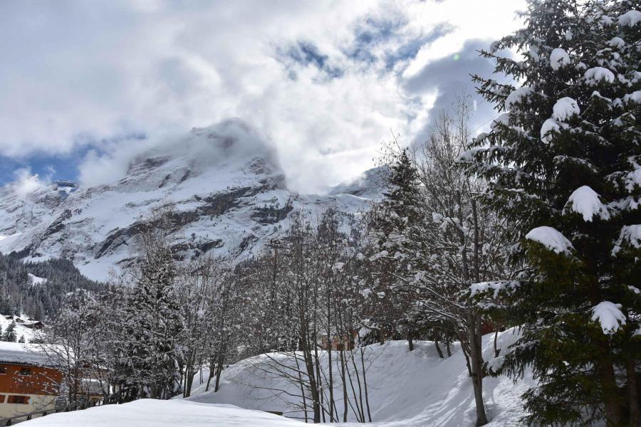Vacaciones en montaña Apartamento 4 piezas para 6 personas (24) - Résidence le Grand Chalet - Pralognan-la-Vanoise - Invierno