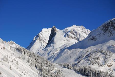 Rent in ski resort Résidence les Jardins de la Vanoise - Pralognan-la-Vanoise - Winter outside