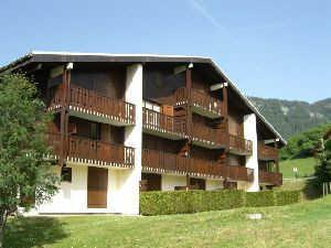 Location au ski Studio coin montagne 4 personnes (BC4208) - Les Balcons d'Arly - Praz sur Arly