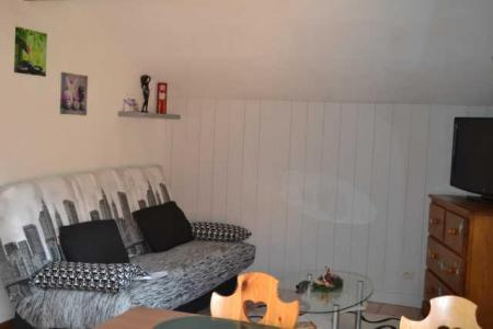 Rent in ski resort 2 room apartment 4 people (234) - Résidence le Jardin des Neiges - Praz sur Arly - Bed-settee