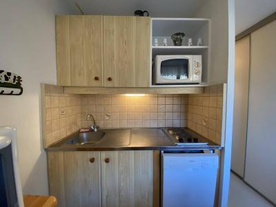 Аренда на лыжном курорте Квартира студия со спальней для 4 чел. (4208) - Résidence les Balcons d'Arly - Praz sur Arly - Небольш&