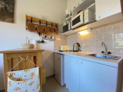 Аренда на лыжном курорте Квартира студия со спальней для 5 чел. (A19) - Résidence Praz les Pistes - Praz sur Arly - Небольш&
