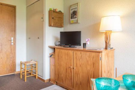Location au ski Appartement 2 pièces 4 personnes (07) - Résidence les Eyssallarettes - Puy-Saint-Vincent - Tv