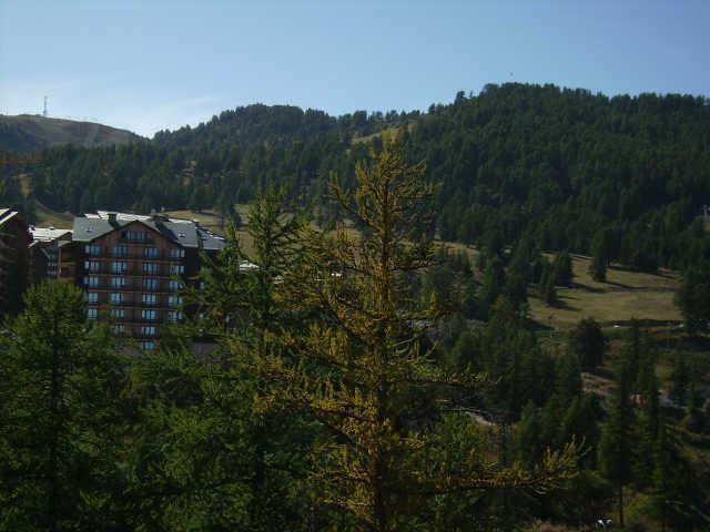 Location au ski Studio coin montagne 4 personnes (509) - Residence Le Belvedere - Risoul