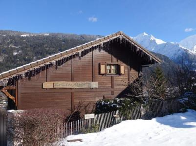 Rent in ski resort 3 room chalet 7 people (2) - Le Clos Alpin - Saint Gervais - Winter outside
