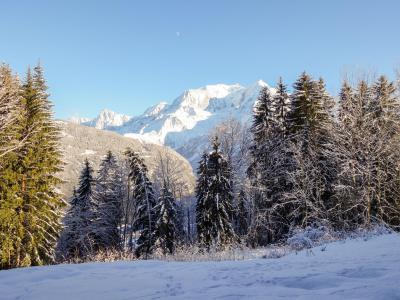 Rent in ski resort 1 room apartment 4 people (2) - Le Taguy - Saint Gervais - Apartment