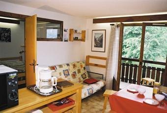 Location au ski Appartement 2 pièces coin montagne 4 personnes (07) - Les Chalets De Tete Rousse - Les Marmottes - Saint Gervais - Séjour