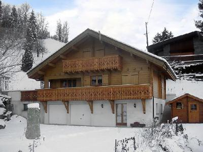 Rent in ski resort 2 room apartment 4 people (1) - Rubigny - Saint Gervais - Winter outside