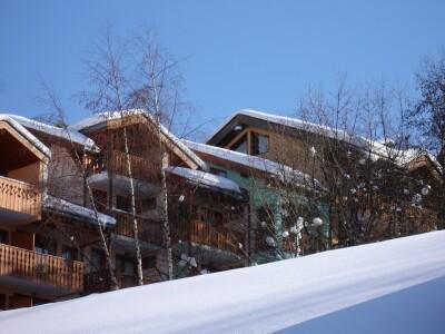 Location au ski Residence Le Neiger - Saint Martin de Belleville - Extérieur hiver