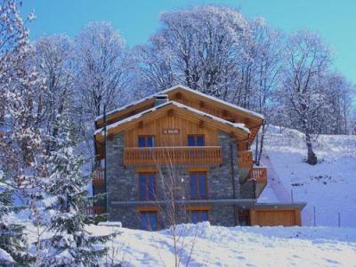 Location au ski Chalet 6 pièces 12 personnes - Chalet Paradis De St Martin - Saint Martin de Belleville - Extérieur hiver