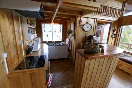 Аренда на лыжном курорте Шале дуплекс 5 комнат 10 чел. - Chalet la Conchette - Sauze - Super Sauze - Кухня