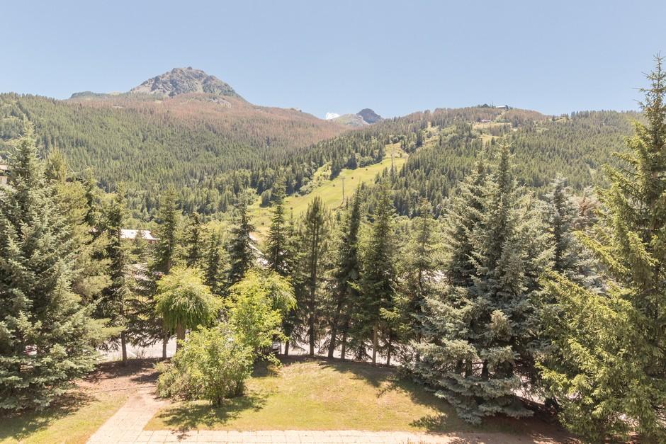 Location au ski Studio coin montagne 4 personnes (898) - Residence Bois Des Coqs - Serre Chevalier