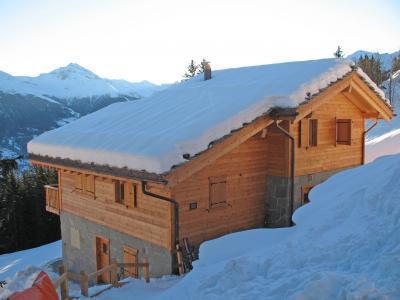 Location au ski Chalet 6 pièces 10 personnes - Chalet Bryher - Thyon - Extérieur hiver