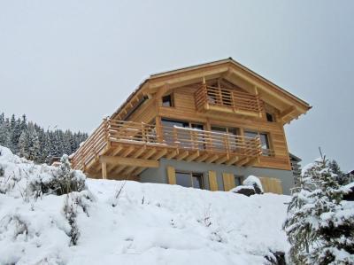 chalet sur piste thyon location vacances ski thyon ski planet