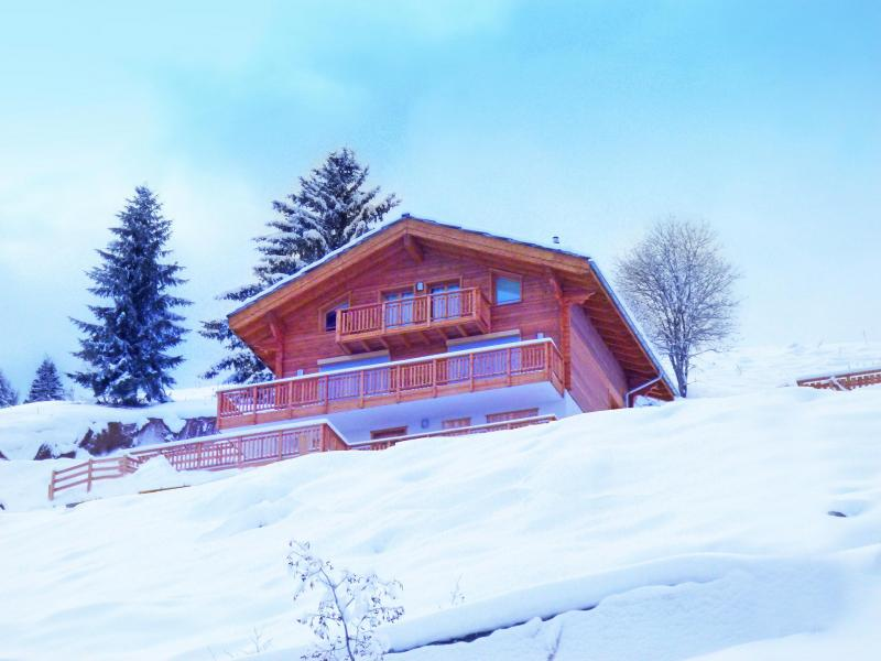 Rent in ski resort Chalet Brock - Thyon - Winter outside