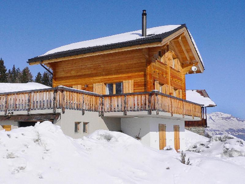 Holiday in mountain resort Chalet Krokus - Thyon - Winter outside