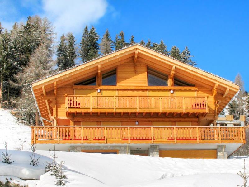 Vacances en montagne Chalet Teychenne - Thyon - Extérieur hiver