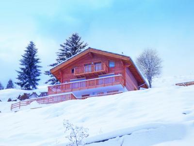 Location au ski Chalet Brock - Thyon - Extérieur hiver
